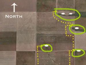 Deer-Bedding-Areas-In-Crop-Fields