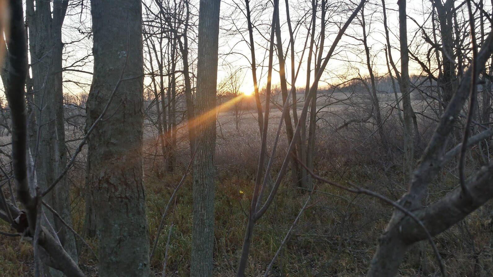 November Michigan Sunset