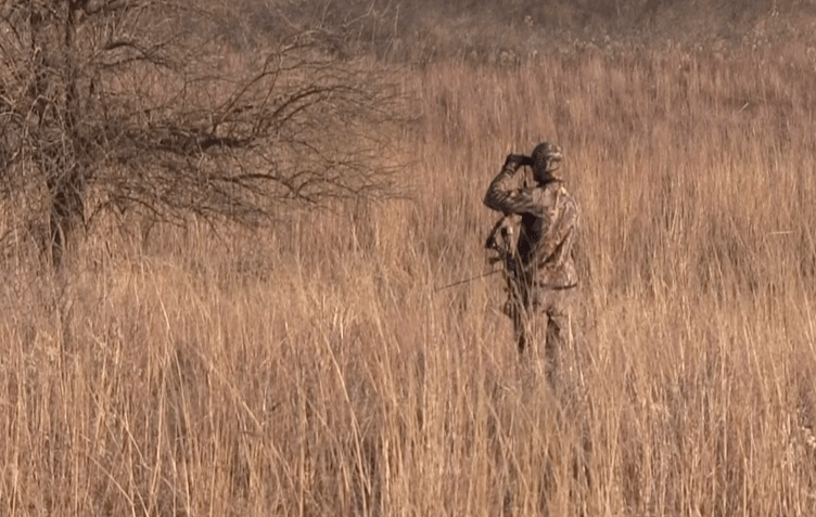 Spot And Stalk Bowhunting