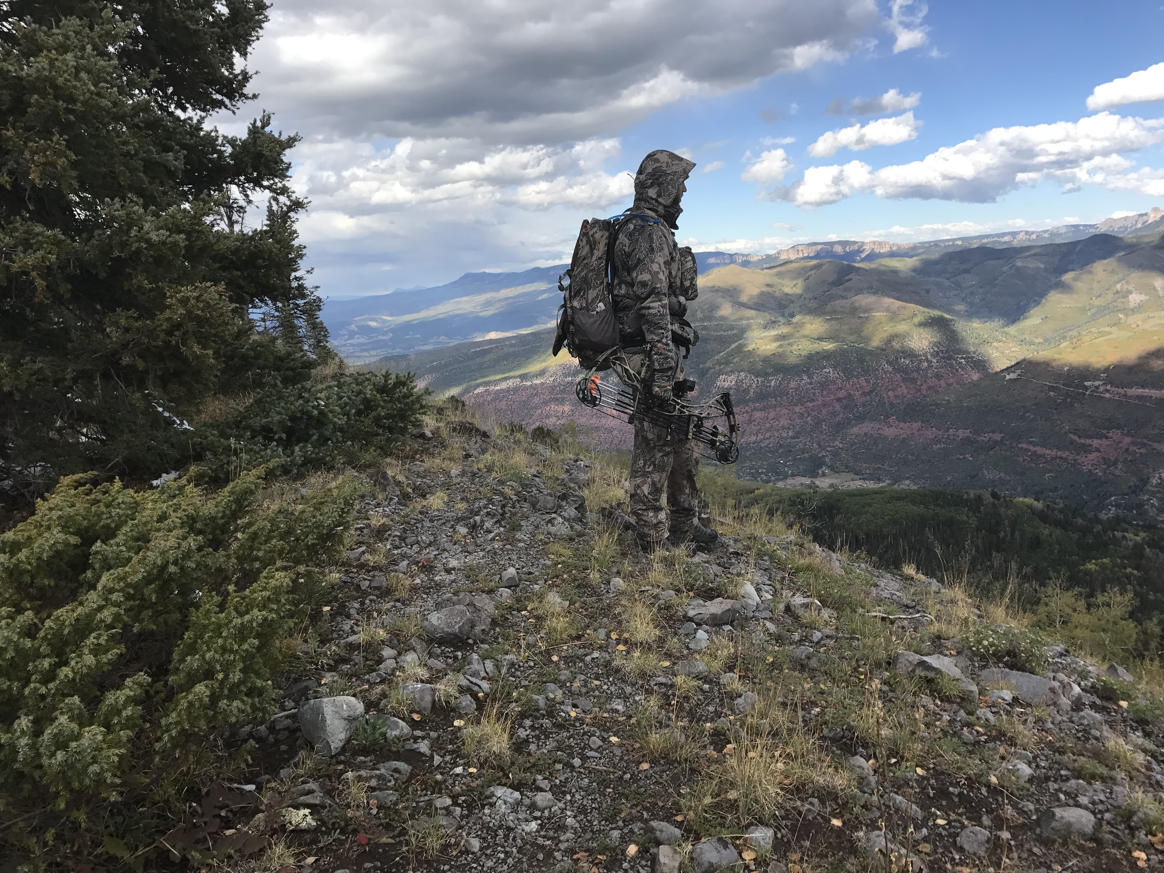Colorado Archery Elk Hunting
