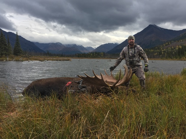 Podcast 21 alaskan moose hunt with clint stout transition wild podcast 21 alaskan moose hunt with clint stout solutioingenieria Gallery